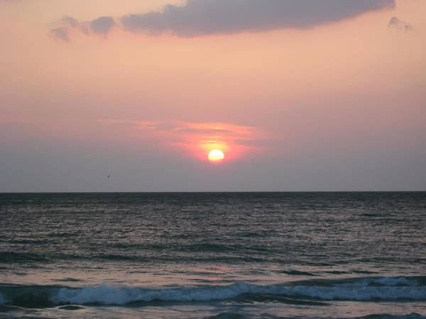 Florida Art Print featuring the photograph Sunset - Florida Style by Bill Cannon