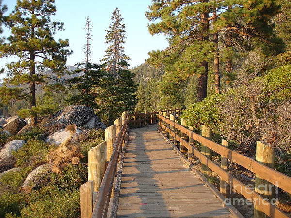 Lake Tahoe Art Print featuring the photograph Tahoe Bridge by Silvie Kendall