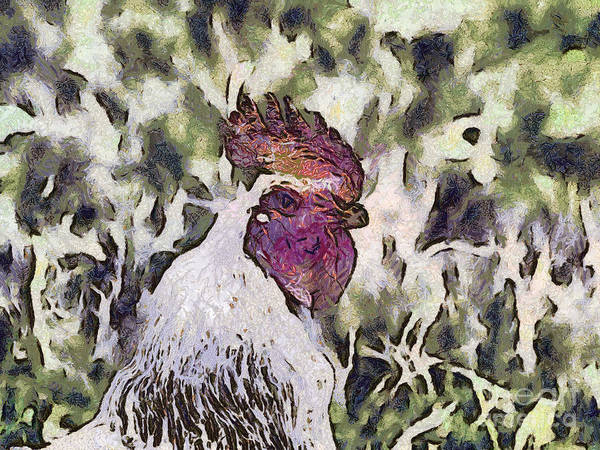 Nature Art Print featuring the painting The Rooster Portrait by Odon Czintos
