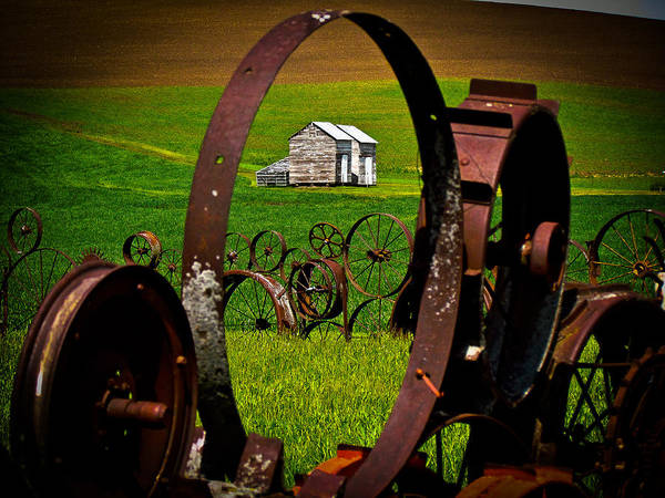 Dahmer Barn Art Print featuring the photograph Through The Fence by Tony and Kristi Middleton