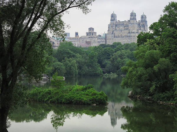Central Park Art Print featuring the photograph Urban Nature by Cornelis Verwaal