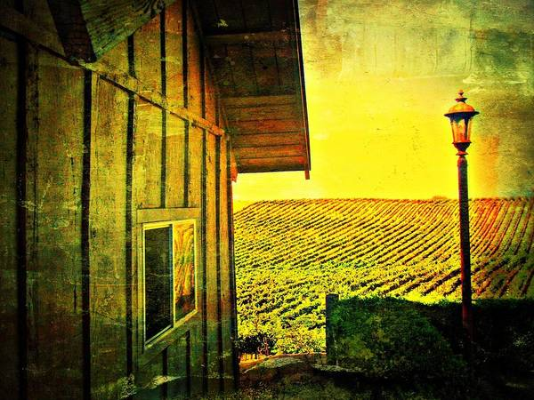 Wine Art Print featuring the photograph Vineyard Reflection by Kevin Moore