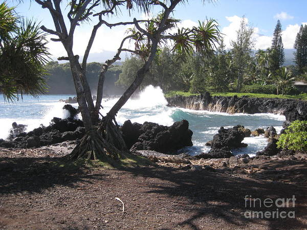 Waves Art Print featuring the photograph Waves On Rock by Terry Hunt