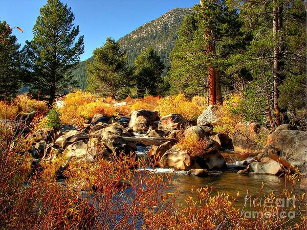 West Fork Carson River Art Print featuring the photograph West Fork Of The Carson River Fall Colors by Scott McGuire