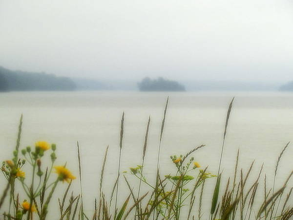 Breeze Art Print featuring the photograph Whisper In The Fog by Patty Gross