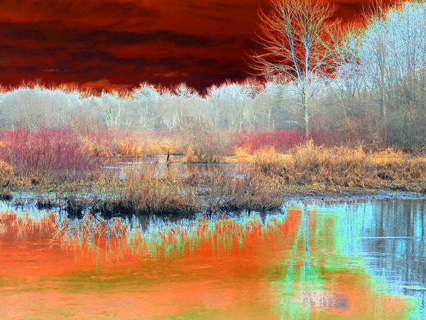 Landscape Art Print featuring the photograph Winter Marsh by Marcia Lee Jones