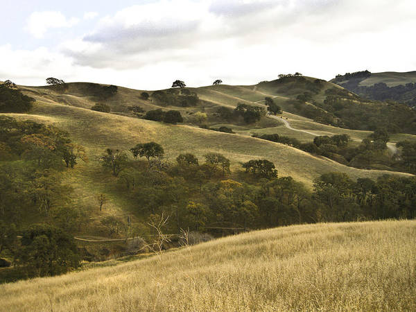 Landscape Art Print featuring the photograph First Hill In Fall by Karen W Meyer