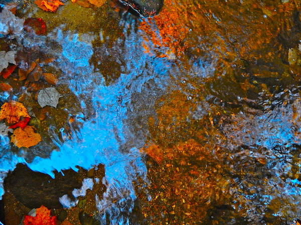 Nature Art Print featuring the photograph Autumn 2015 120 by George Ramos
