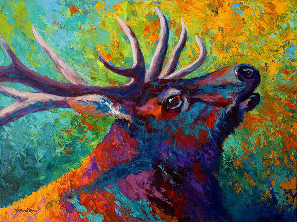 Elk Art Print featuring the painting Forest Echo - Bull Elk by Marion Rose