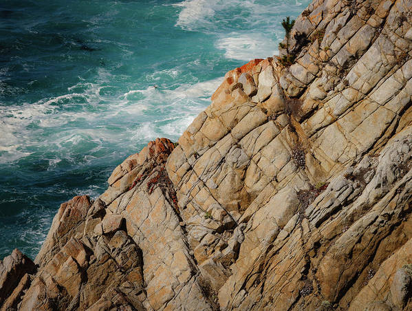 Point Lobos Art Print featuring the photograph Point Lobos California by Mike Penney