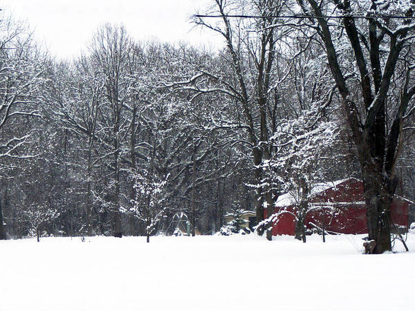 Snow Art Print featuring the photograph Red Barn by Cindy Yeakel