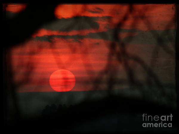 Sunset Art Print featuring the photograph Sunset by Angel Ciesniarska