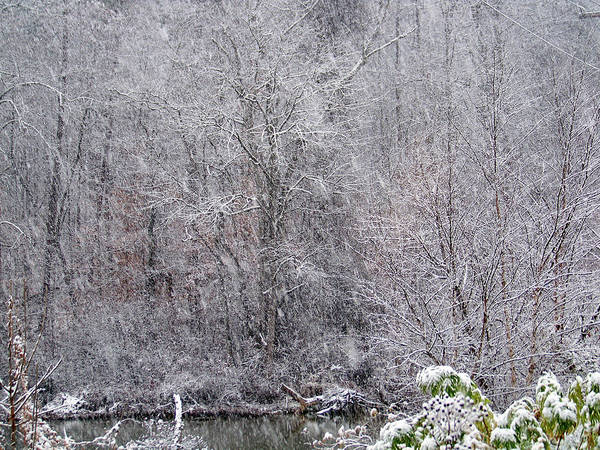 Snow Art Print featuring the photograph 3003-snowscape by Martha Abell