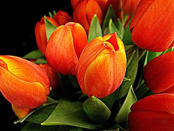 Flowers Art Print featuring the digital art A Bunch Of Tulips by Bonita Brandt