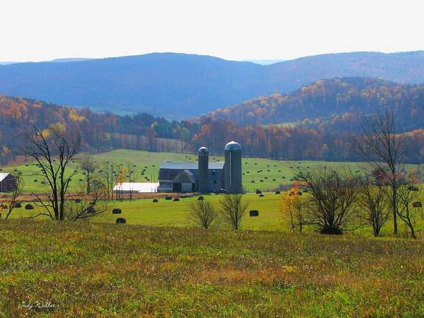 Farm Art Print featuring the photograph A Special Place by Judy Waller