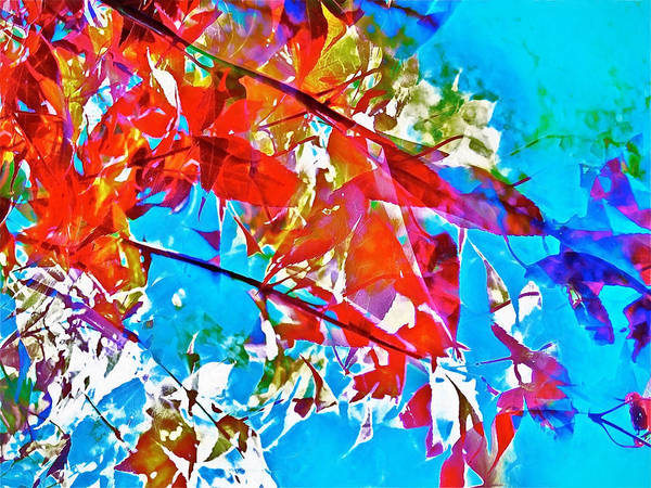 Abstract Art Print featuring the photograph Abstract 128 by Pamela Cooper