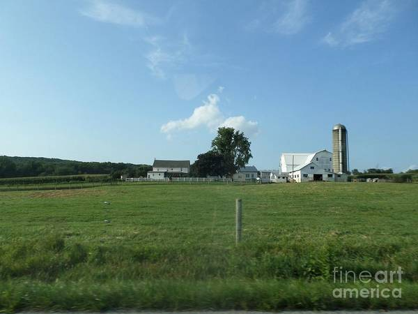Amish Art Print featuring the photograph Amish Homestead 38 by Christine Clark