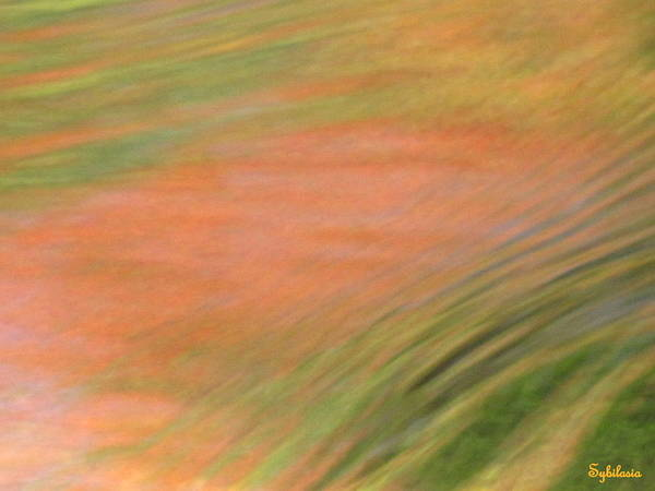 Abstract Art Art Print featuring the photograph At The Subtle Feeling Level by Sybil Staples