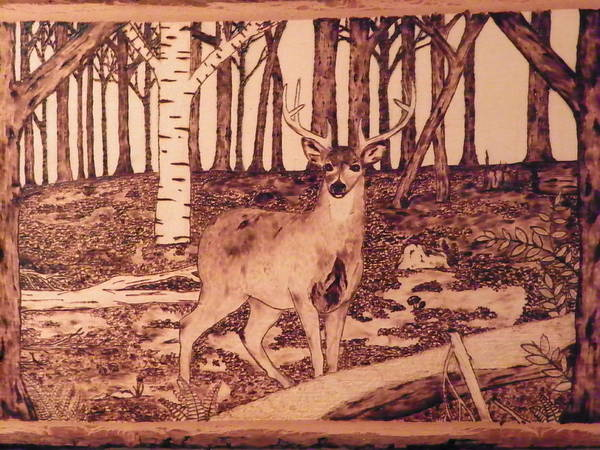 Forest Art Print featuring the pyrography Autumn Deer by Andrew Siecienski