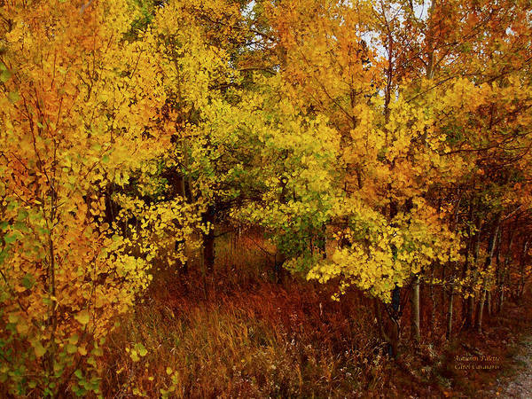Autumn Art Print featuring the mixed media Autumn Palette by Carol Cavalaris