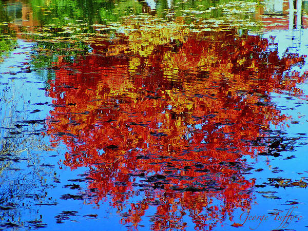 Reflections Autumn Trees Fall Water Colorful Colorado Art Print featuring the photograph Autumn Reflection by George Tuffy