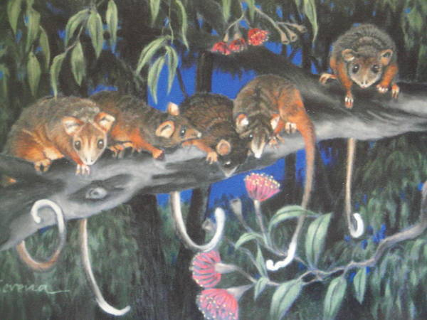 Animals Art Print featuring the painting Baby Possums by Serena Valerie Dolinska