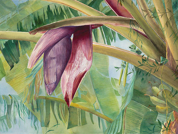 Bananas Art Print featuring the painting Banana Flower by AnnaJo Vahle