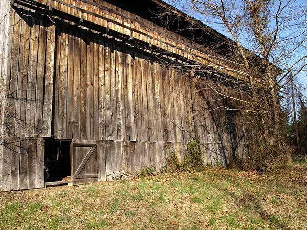 Barn Art Print featuring the photograph Barn Door by Kim