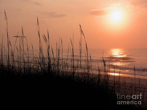 East Cost Art Print featuring the photograph Beach Sun by Paul Boroznoff