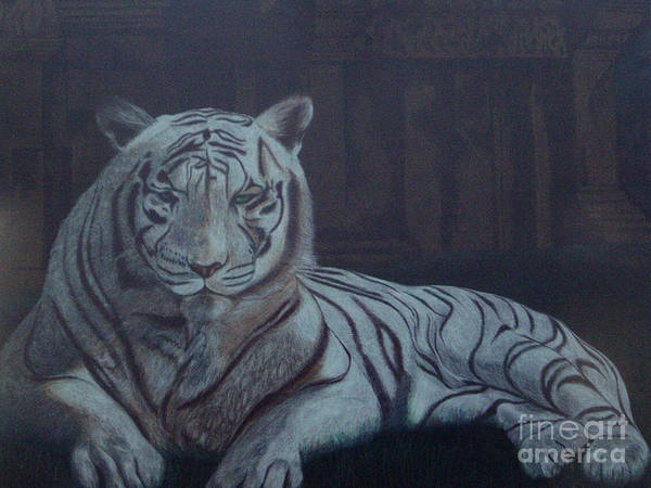 Wild Live Art Print featuring the painting Bengala Tiger by Fanny Diaz