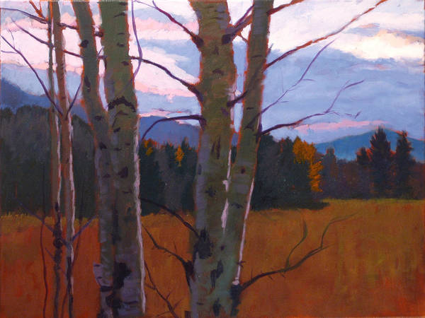Tree Art Print featuring the painting Birches At Twilight by Robert Bissett