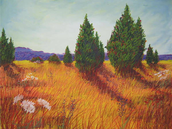 Virginia. Art Print featuring the painting Birds And Fences by Wynn Creasy