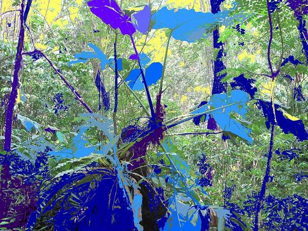 Art Print featuring the photograph Blue Jungle by Ian MacDonald