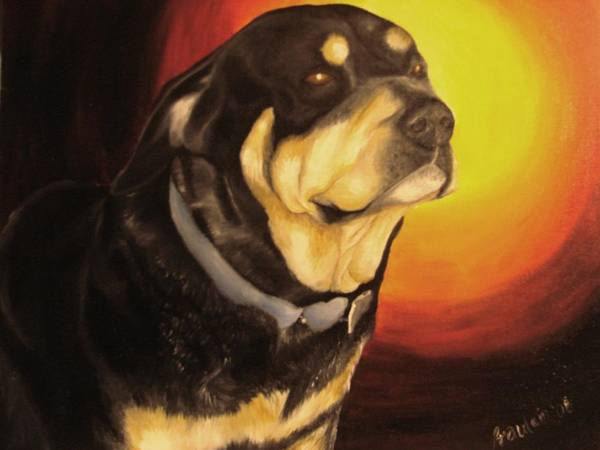 Paintings Art Print featuring the painting Canine Vision by Glory Fraulein Wolfe