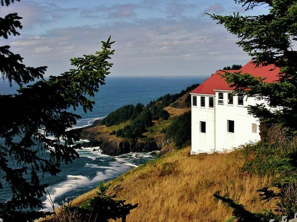 Cape Foulweather Point Art Print featuring the photograph Cape Foulweather Point by Marilyn Smith