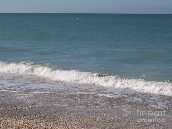 Beach Art Print featuring the photograph Captiva by Elizabeth Klecker