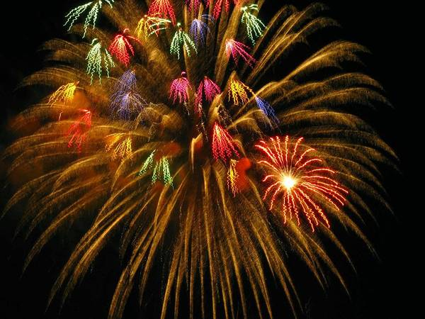 Fireworks Art Print featuring the photograph Celebrate by Rhonda Barrett