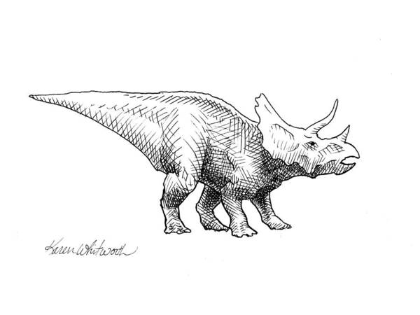 Triceratops Drawing Art Print featuring the drawing Cera The Triceratops - Dinosaur Ink Drawing by Karen Whitworth
