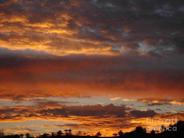 Sunset Art Print featuring the photograph Coco Sky by Chad Natti