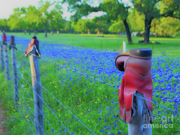 Texas Art Print featuring the photograph Country Western Blue Bonnets by Third Eye Perspectives Photographic Fine Art