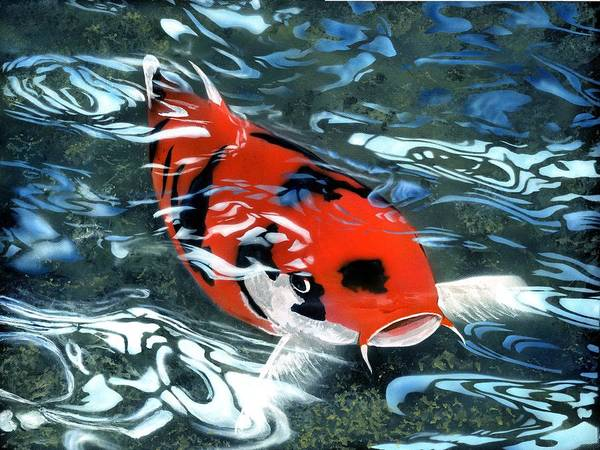 Coy Koi Art Print featuring the painting Coy Koi by Charles Parks