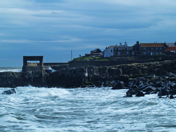 Sea Art Print featuring the photograph Craster by Steve Watson