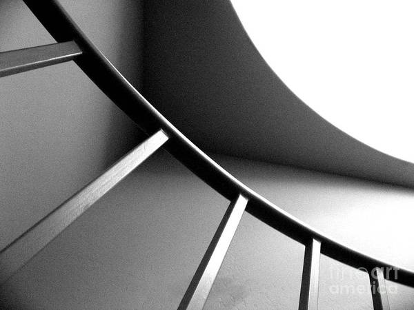Abstract Art Print featuring the photograph Curvature by Dani Marie