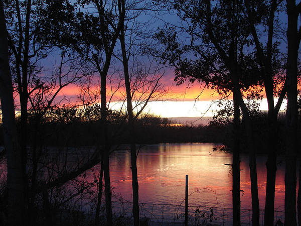 Red Gold Blue Lake Trees Art Print featuring the photograph December Sunset by Luciana Seymour