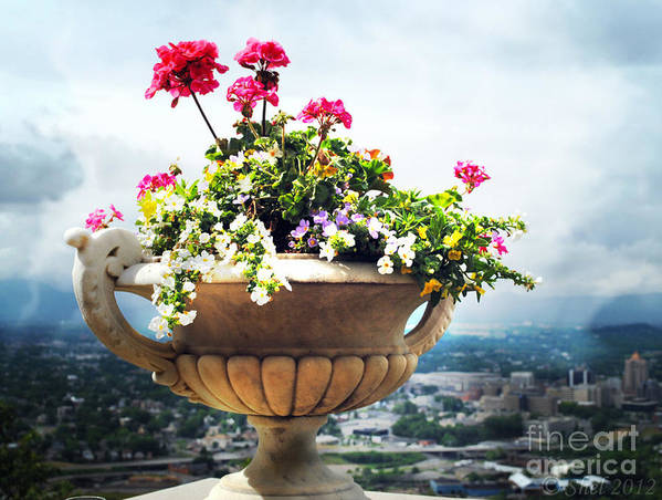 Flower Pot Art Print featuring the photograph Derby Day Gala by Michele Hancock