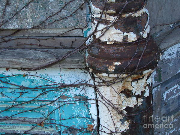 Ontario Art Print featuring the photograph Pic Abw by Donica Abbinett