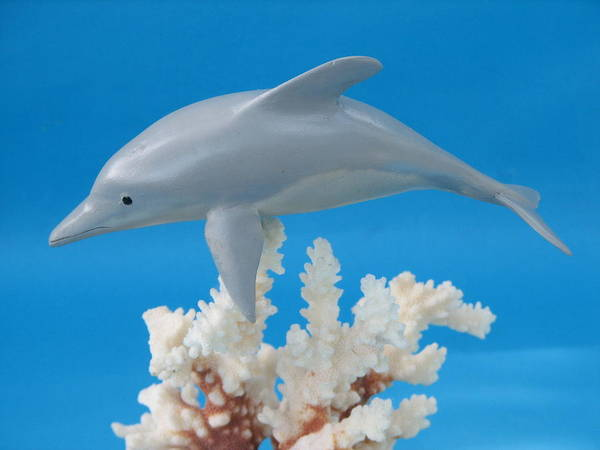 Woodcarving Art Print featuring the sculpture Dolphin On Coral by Jack Murphy