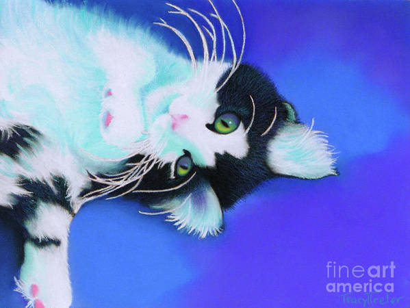 Cat Art Print featuring the pastel Dreamer by Tracy L Teeter