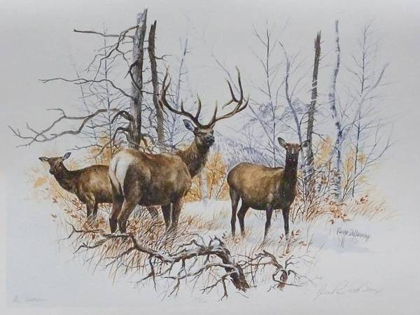 Limited Editions Art Print featuring the painting Elk by Jean Pierre DeBernay