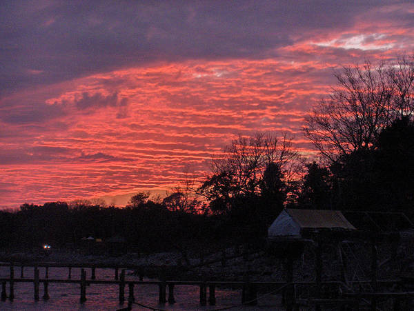 Sunset Art Print featuring the photograph End Of Day by Nicole I Hamilton